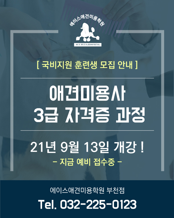 부천점 국비지원 안내